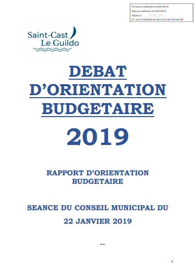 Cover of DEBAT DORIENTATION BUDGETAIRE 2019