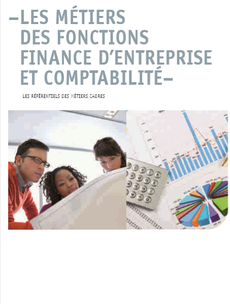 Cover of LES METIERS DES FONCTIONS FINANCE DENTREPRISE ET COMPTABILITE