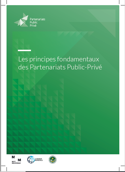 Cover of LES PRINCIPES FONDAMENATUX DES PARTENARIATS PUBLIC PRIVE