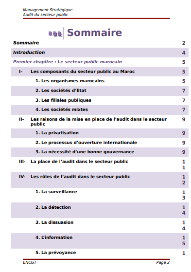 MANAGEMENT STRATEGIQUE AUDITEUR DU SECTEUR PUBLIC