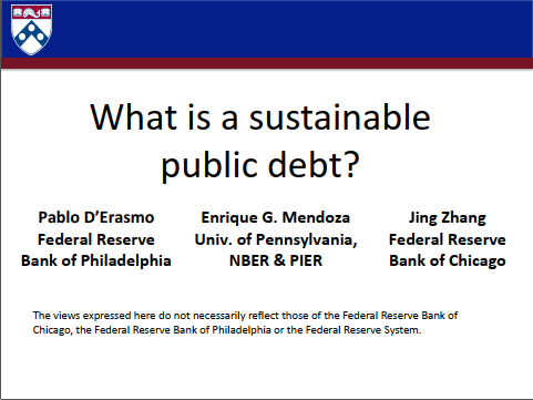 WHAT IS A SUSTAINABLE PUBLIC DEBT